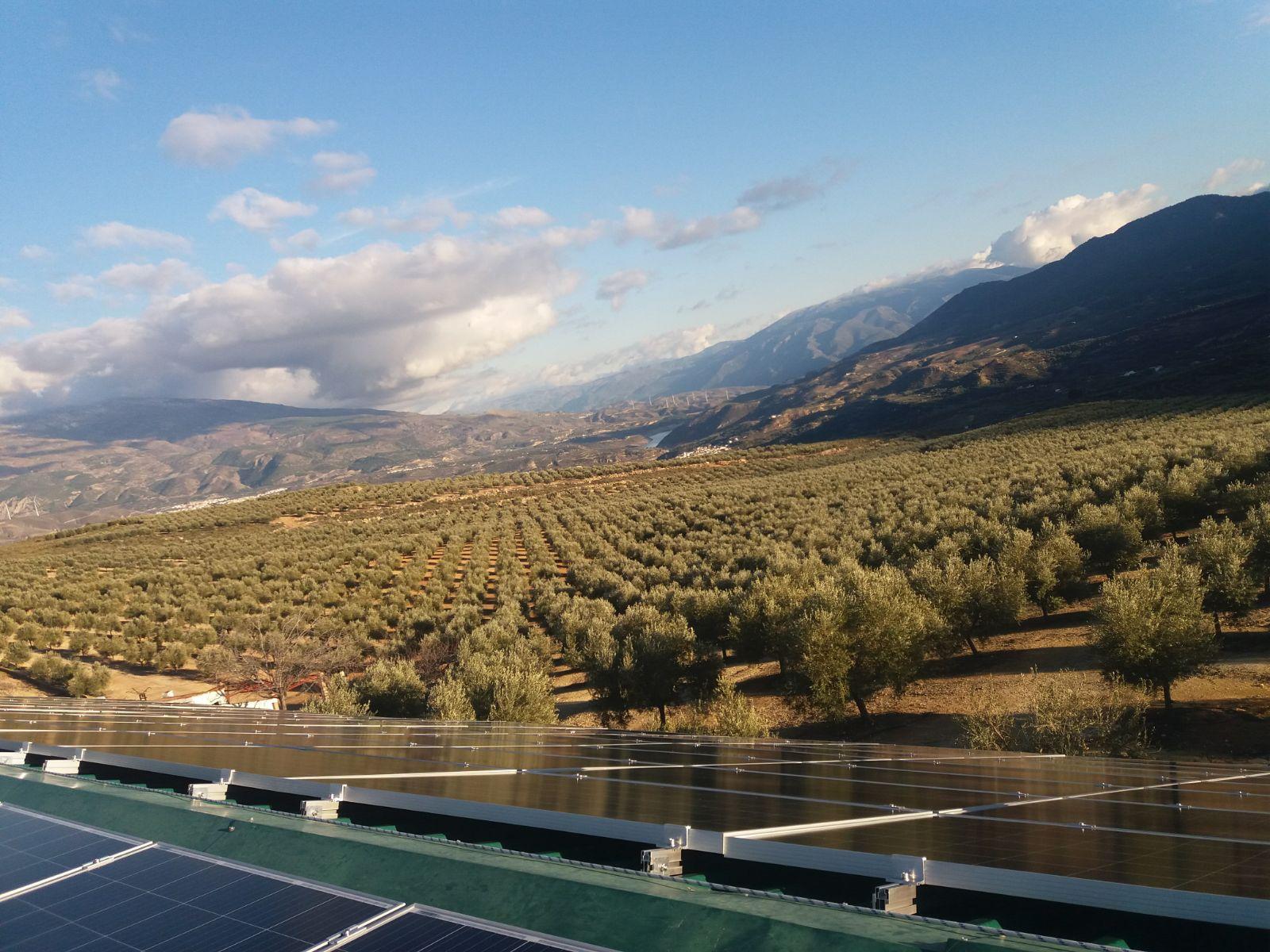 Instalación de 28kw para riego en finca agrícola en Albuñuelas (Granada)
